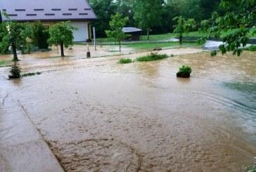 Zaradi nedavnih neurij s točo precejšnja škoda na kmetijskih površinah na širšem Ptujskem in Pomurskem območju