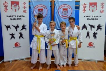 Novi uspehi lenarških karateistov