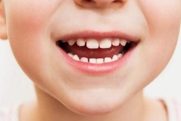 Učenci Osnovne šole Voličina zmagovalci podravske regije 35. tekmovanja za čiste zobe ob zdravi prehrani