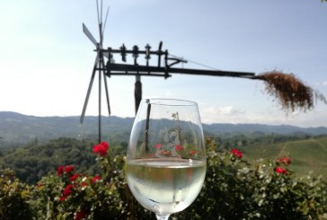 Letošnji vinski letnik najprimernejši za suha vina
