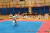 Za lenarškimi karateisti uspešen mesec tekmovanj