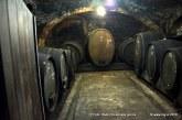 Ogljikov dioksid v vinskih kleteh je lahko usoden