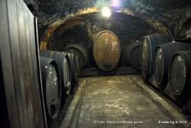 Tretji Festival vin osrednjih Slovenskih goric