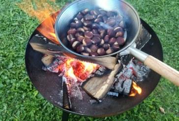 Pri Šikerjevih za konec tedna še zadnja priložnost za pečen kostanj in sladki mošt