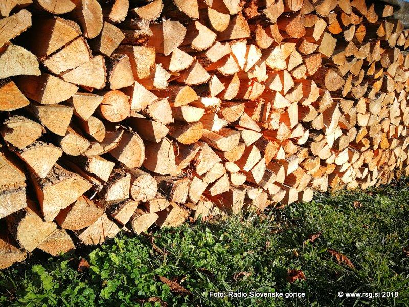 V lovrenških gozdovih pogozdovanje, v državnem gozdu v Hrastovcu sečnja