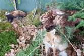 FOTO: Spomladanski sejemski trojček odpira letošnje dogajanje na Pomurskem sejmu
