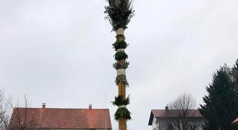 Na Dolgih Njivah in v Radehovi v teh dneh izdelujejo okoli 20-metrska presmeca