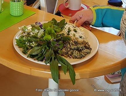 V Lenartu razstava zdravilnih rastlin