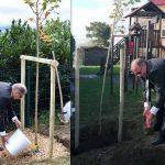 Društvo Ohranimo naravo čisto si s sajenjem dreves prizadevajo za senco na vrtčevskih in šolskih površinah