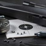 Pokal Medobčinske lige v streljanju z zračno puško letos v Osek